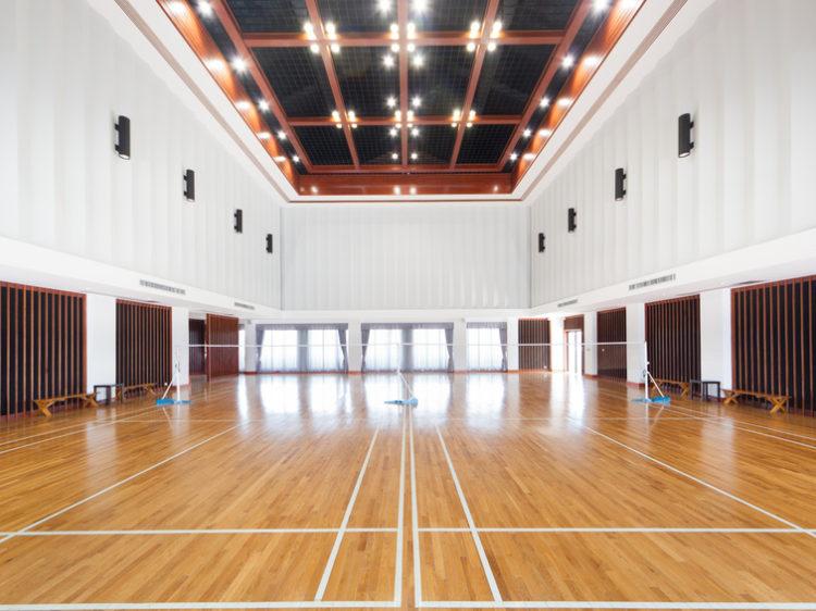 Sporthallen